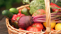 fruit-and-veg-basket-home-page-fades